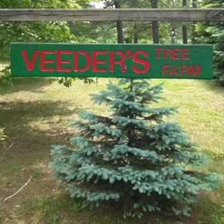 Veeder's Tree Farm in Earlton