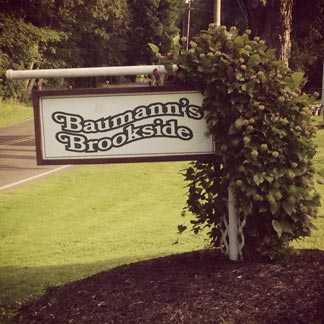 Baumann's Brookside Resort in Greenville