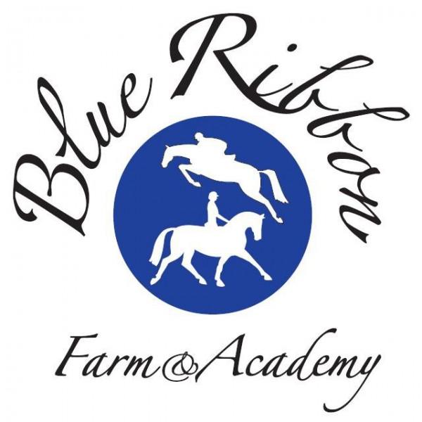 Blue Ribbon Farm & Academy in Cairo