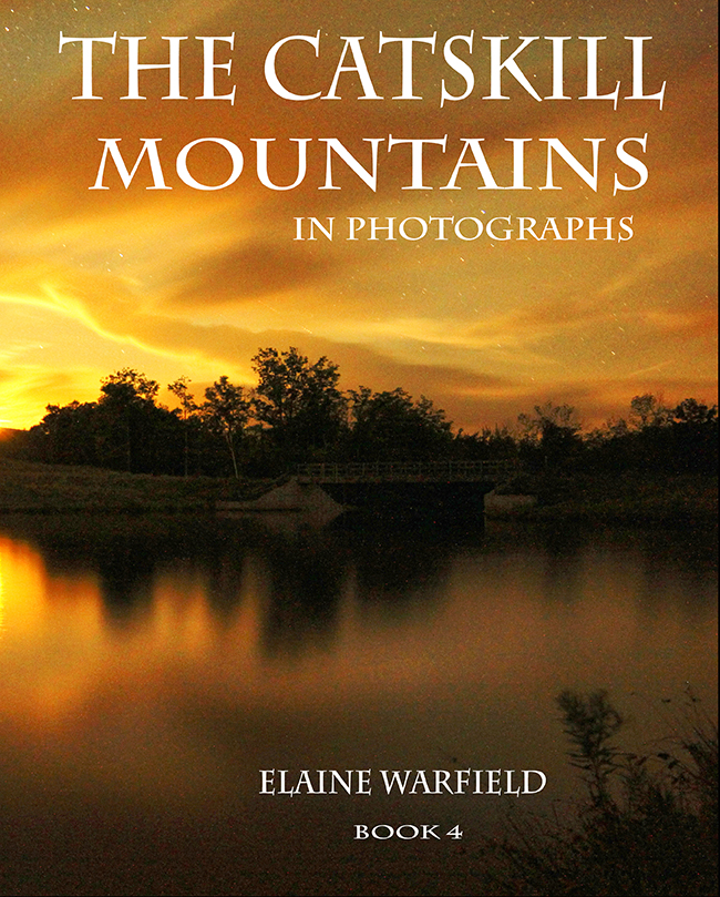 Elaine Warfield Photography